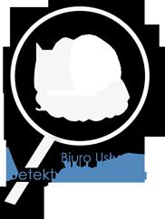 Detektyw Toruń - NO Secrets